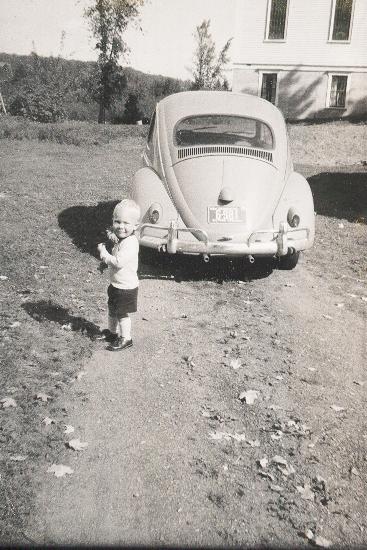58_beetle.jpg